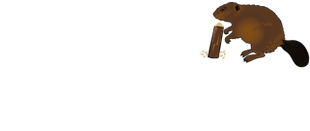 logo_lizotte_solution